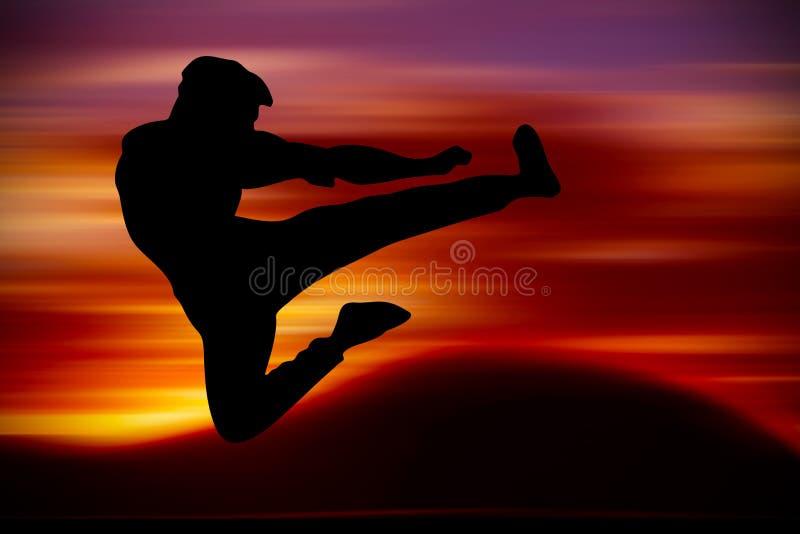 武术训练 免版税图库摄影