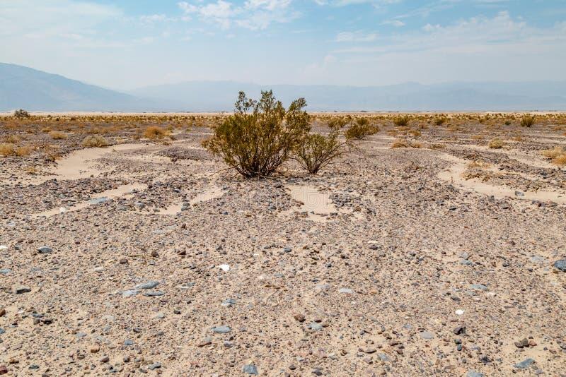 死亡谷横向 免版税库存照片
