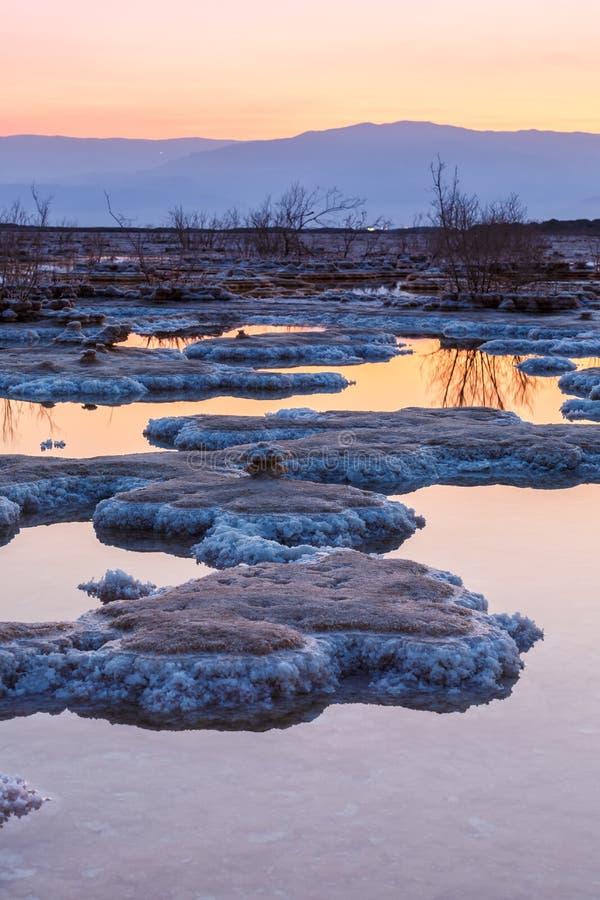 死海以色列日出早晨盐纵向格式风景自然 免版税库存照片