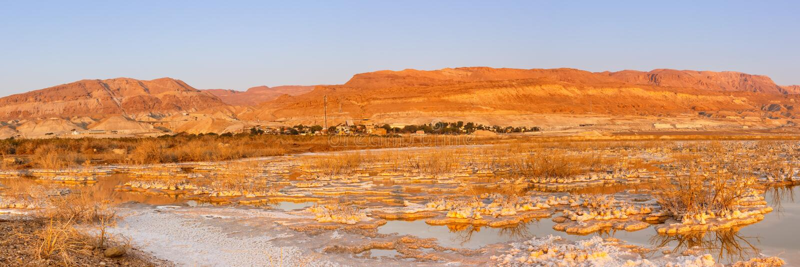 死海全景以色列日出早晨风景自然 免版税库存照片