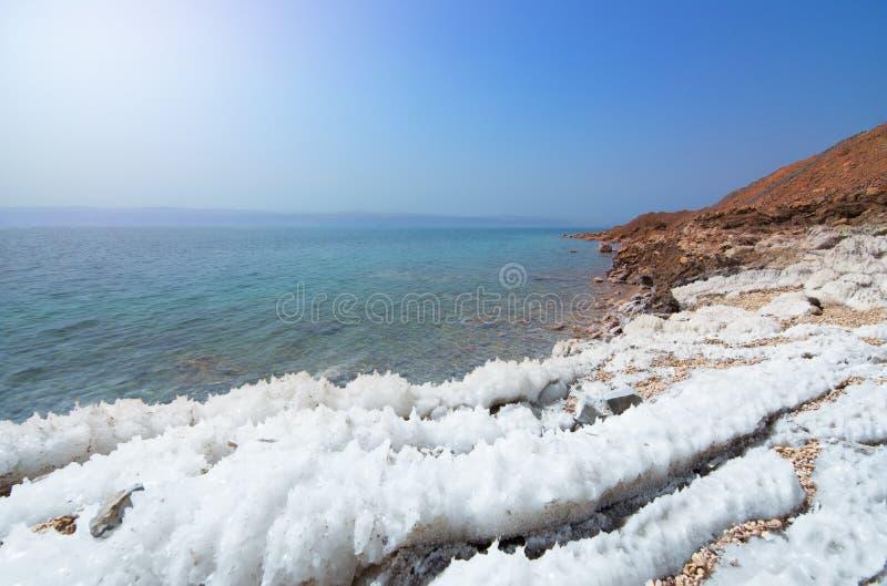 死海海岸线沙漠风景与白色盐,约旦,以色列的 库存图片