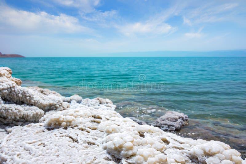 死海海岸线沙漠风景与白色盐,约旦,以色列的 库存照片