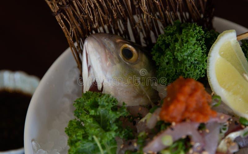 死的鱼头 库存照片