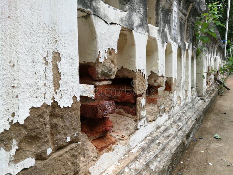 死者的骨头的墙壁 库存图片