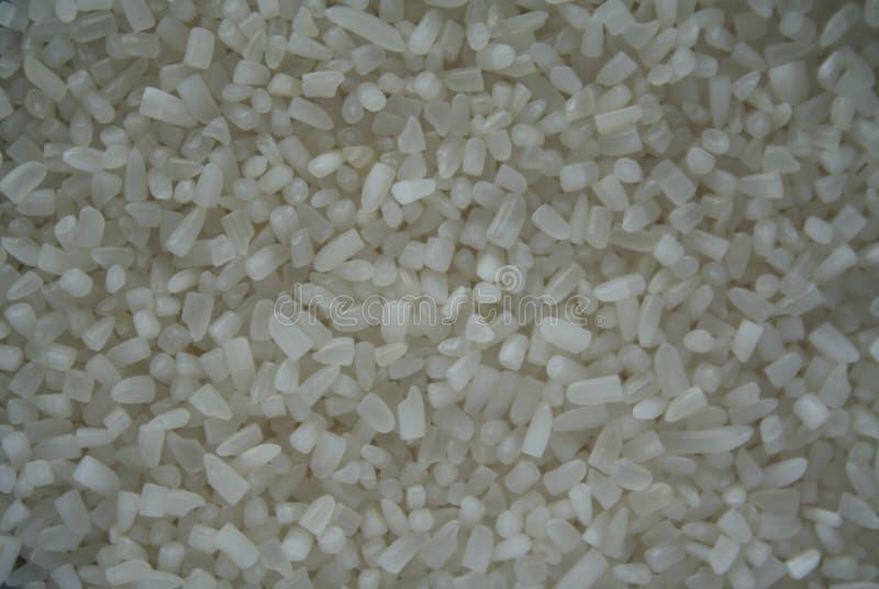 残破的茉莉花米,印度大米背景,茉莉花米 免版税库存图片