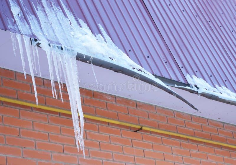 残破的雨天沟 冰水坝 在新的打破的雨天沟系统的特写镜头没有屋顶保护在房子建筑的雪卫兵 免版税库存照片