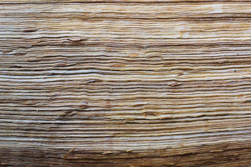 残破的木纹理 图库摄影
