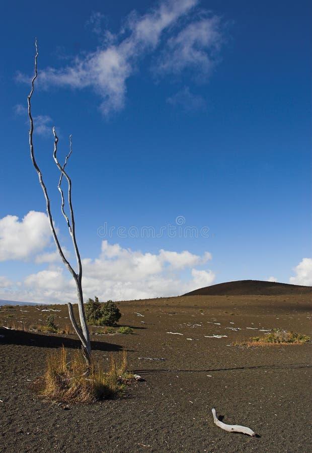 毁灭夏威夷国家公园线索火山 免版税图库摄影