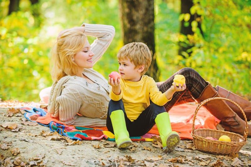母亲俏丽的妇女和小儿子放松的森林野餐 E 饮用快餐在期间 免版税库存照片