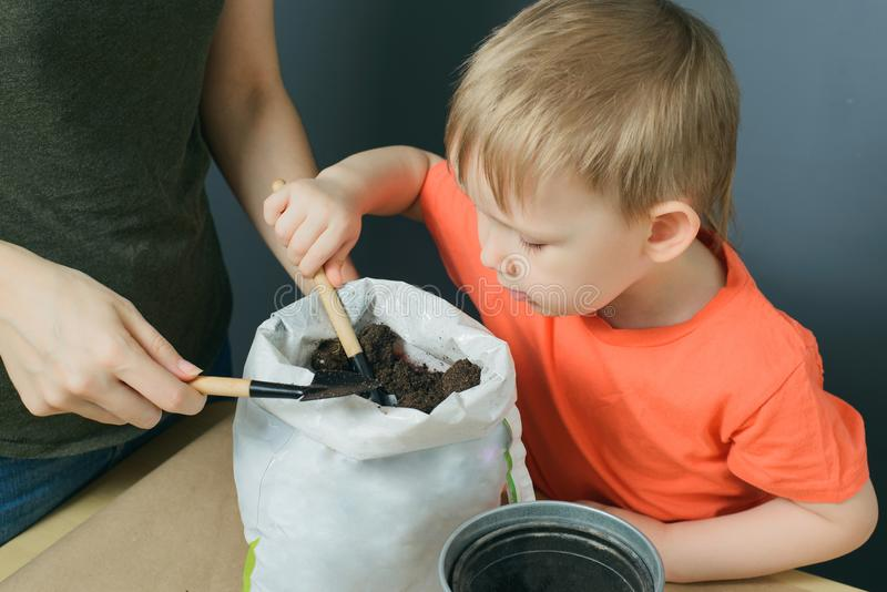 母亲和一点儿子采取从袋子的土壤金属化在桌上的花盆 库存照片