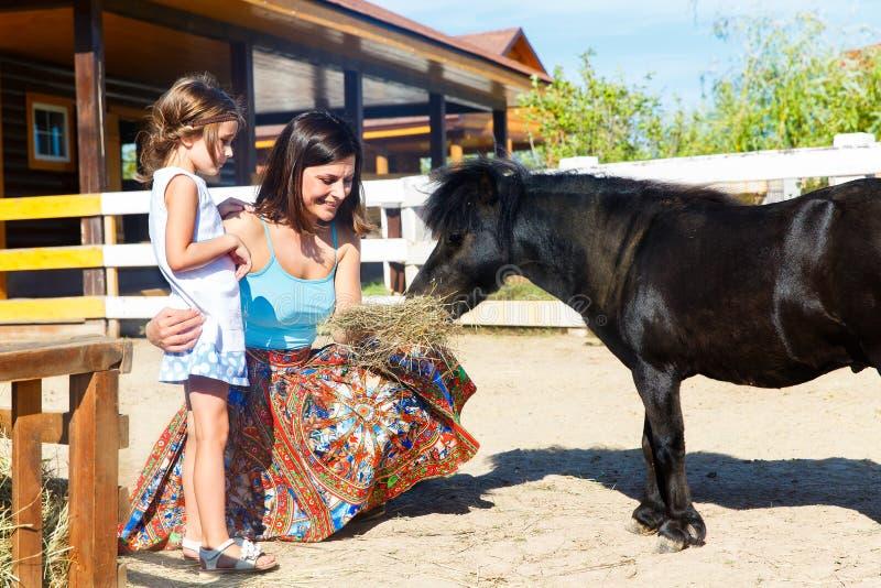 母亲和女儿喂养与在农场的秸杆小马 库存图片