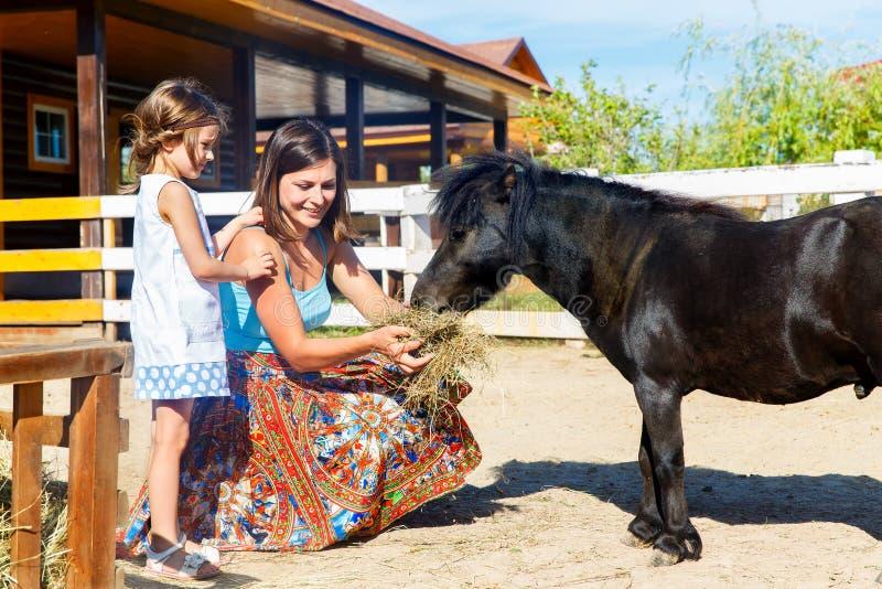 母亲和女儿喂养与在农场的秸杆小马 图库摄影