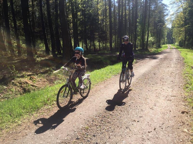 母亲和女儿自行车的在森林道路 库存图片