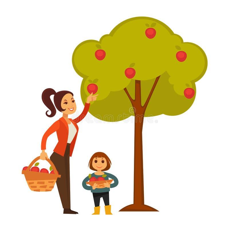 母亲和女儿采摘苹果从树到篮子 库存例证