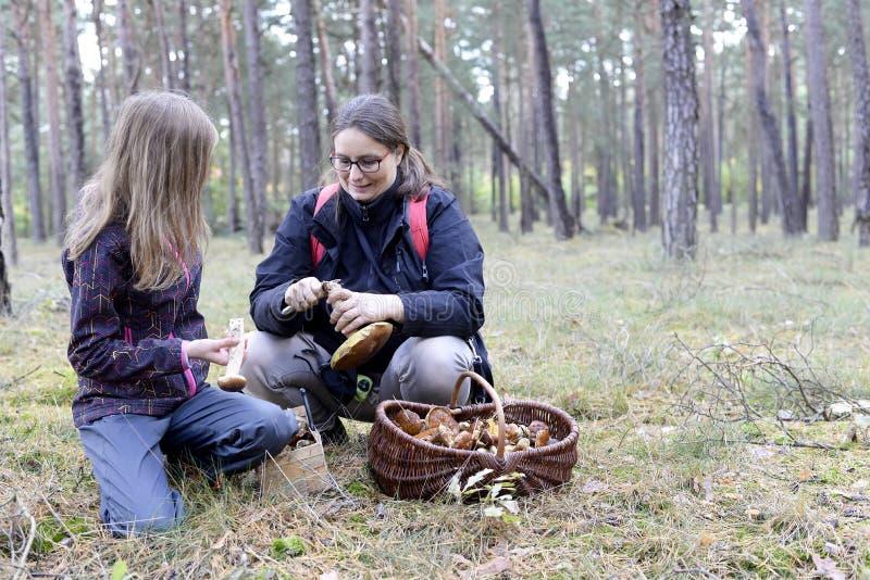 母亲和女儿采摘mushroomes 库存图片