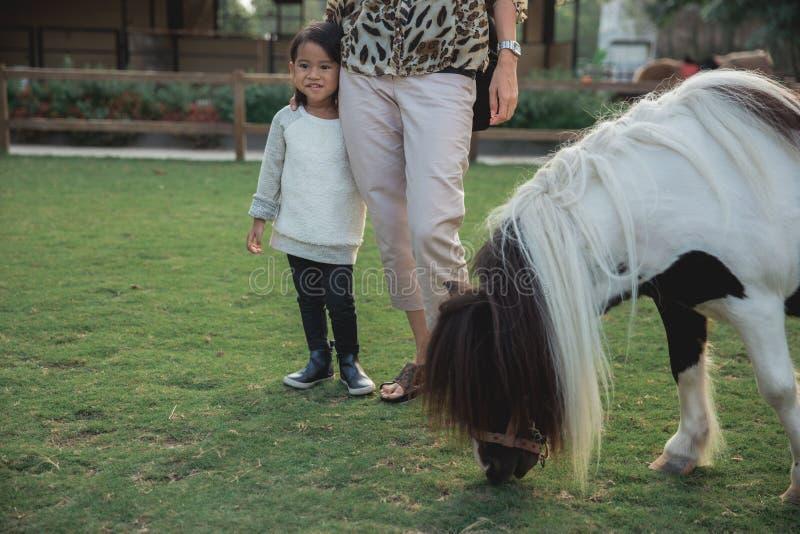 母亲和孩子喂养在室外的一匹马 免版税库存图片