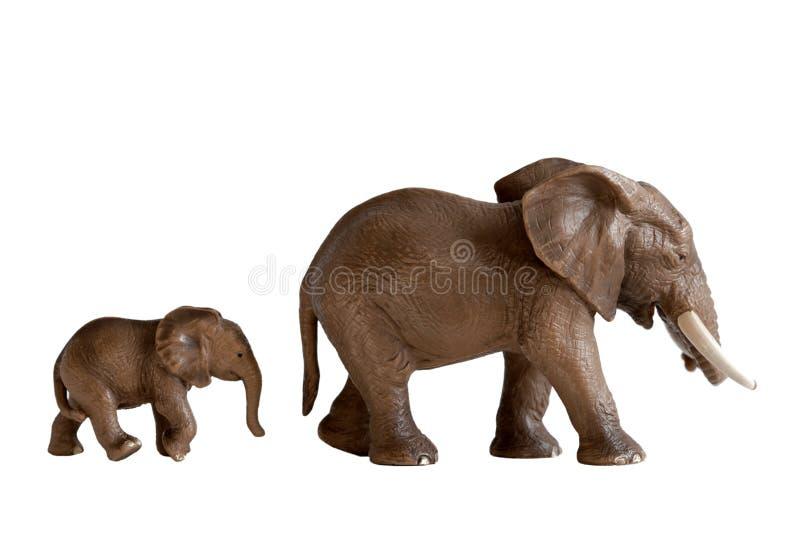 母亲和婴孩大象戏弄被隔绝的白色背景 免版税库存图片