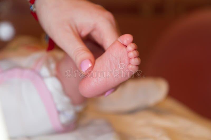 母亲握一只婴儿、手指和小的脚的腿的手健康儿童 库存照片