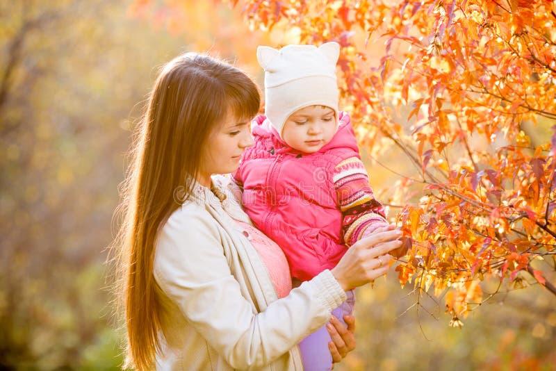 年轻母亲显示在树的孩子女孩下落的叶子 免版税库存照片