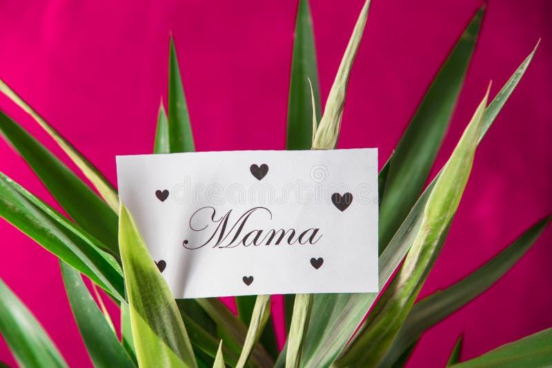 母亲节信件 免版税库存图片