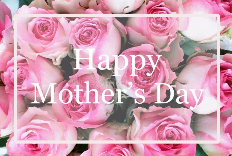 母亲节桃红色和白玫瑰背景贺卡  库存照片
