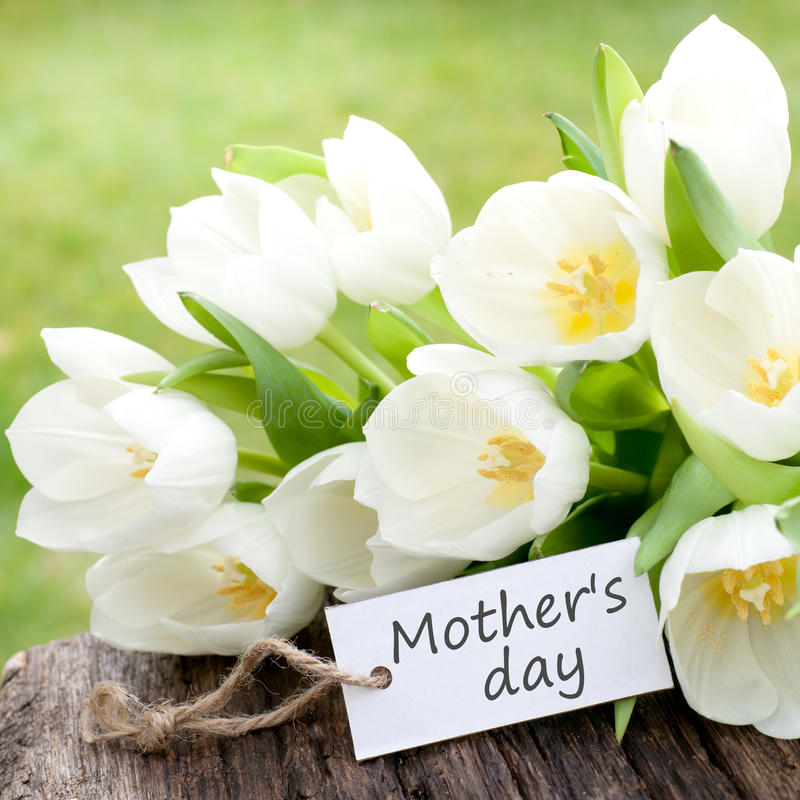 母亲节 免版税库存图片