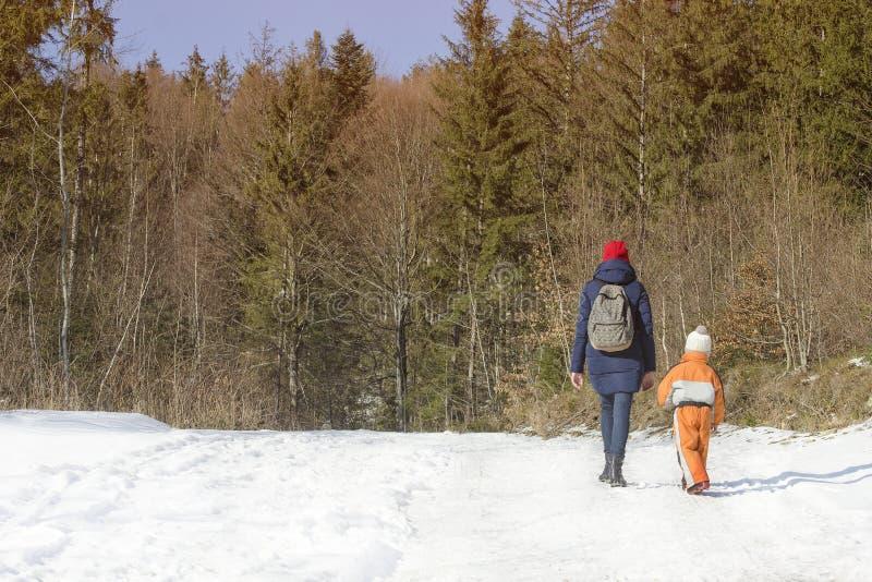 母亲走沿积雪的路的withlittle儿子以具球果森林冬天好日子为背景 库存照片