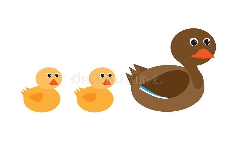 母亲鸭子和鸭子连续 库存例证