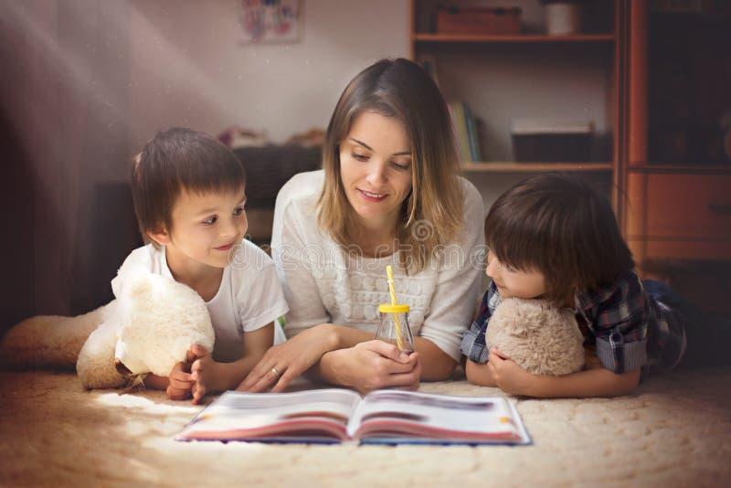 年轻母亲,读了一本书给她的tho孩子,男孩, livi的 免版税图库摄影