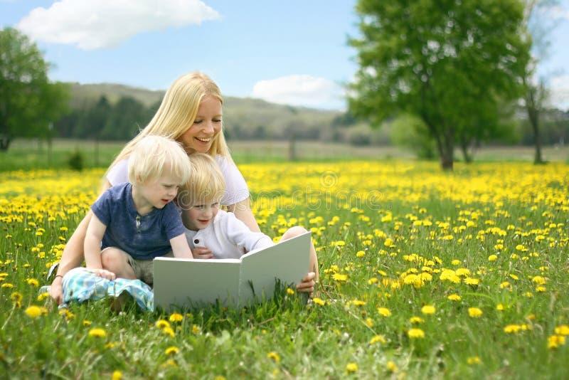 母亲读书对两个幼儿的故事书外面在Meado 免版税库存照片
