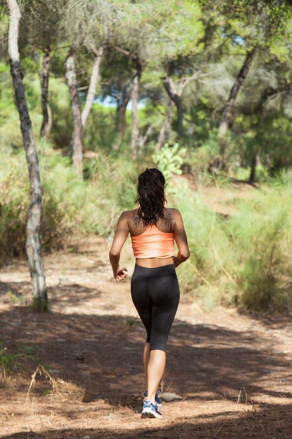 母慢跑者看法从后面在晴朗的森林里 库存图片