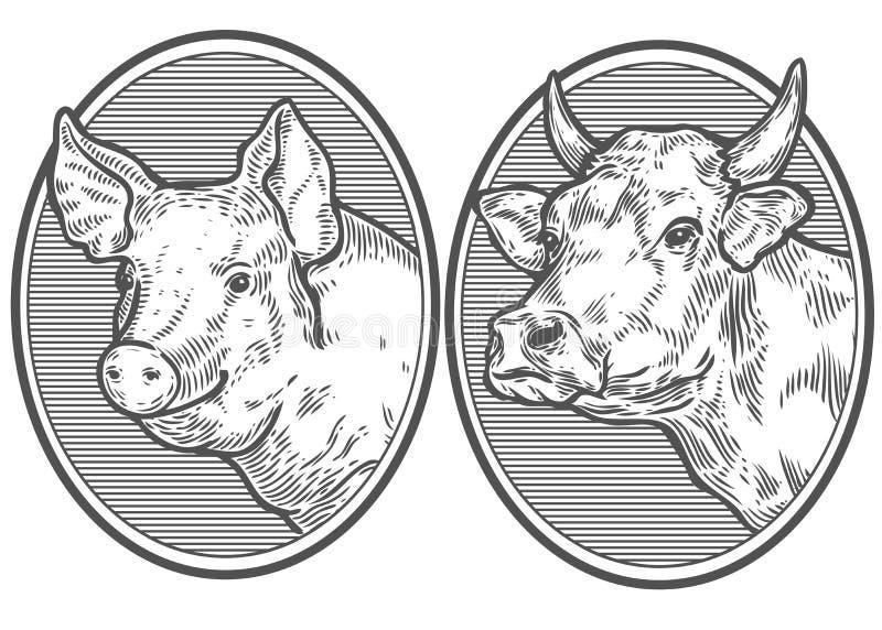 母牛和猪头 在一个图表样式的手拉的剪影 葡萄酒传染媒介板刻 皇族释放例证