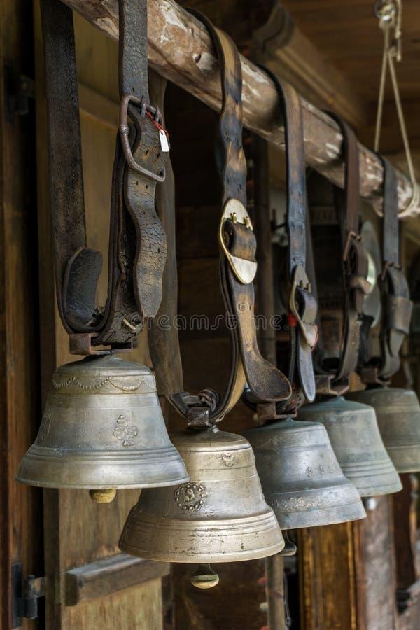 母牛响铃在瑞士 免版税库存照片