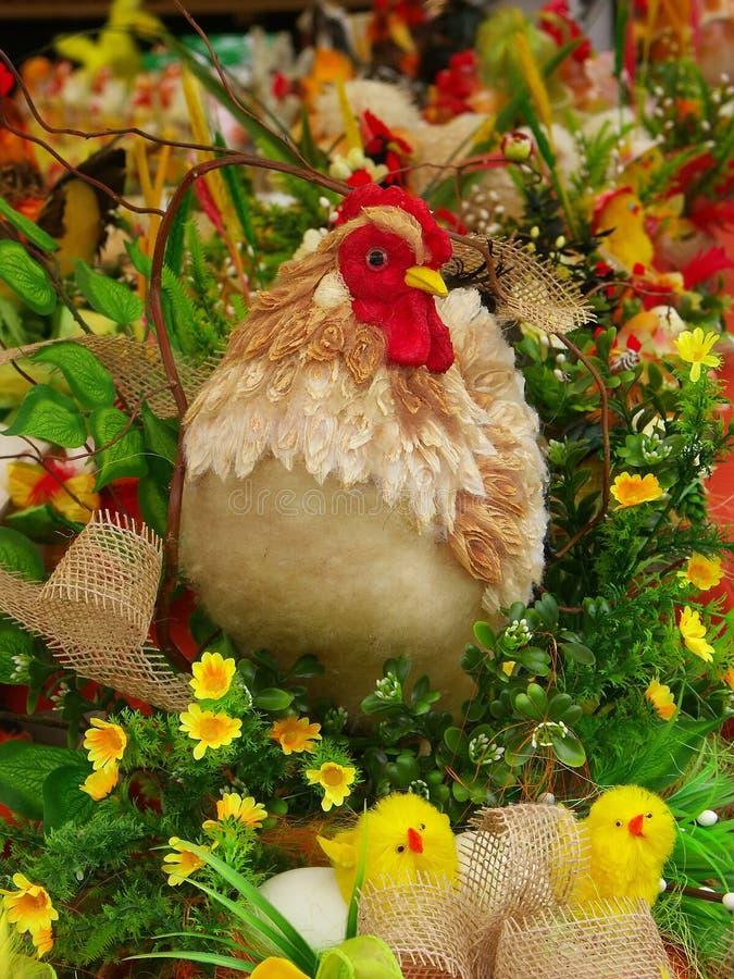 母鸡刚孵出的雏 库存图片