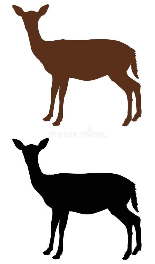 母鹿或鹿剪影-蹄形的反刍动物哺乳动物 向量例证