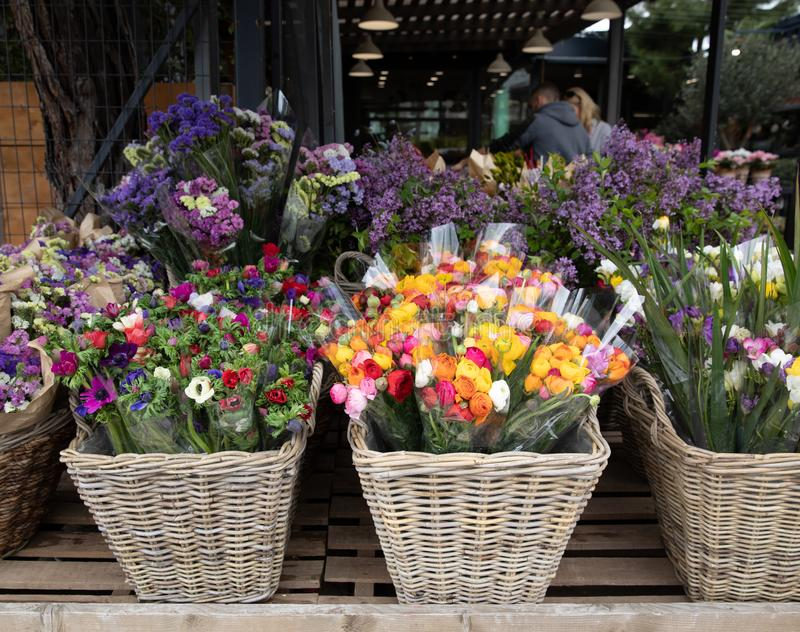 每天花抵抗以新伐花例如银莲花属coronaria,波斯毛茛,小苍兰品种  库存照片