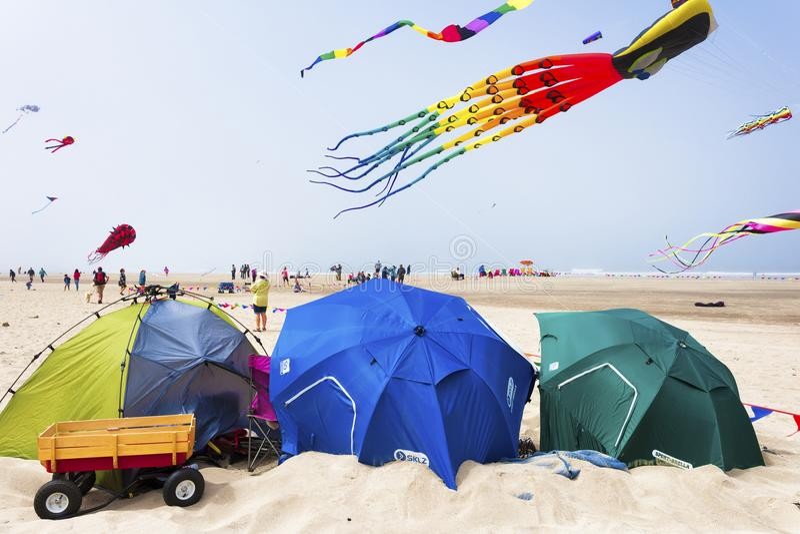 每年风筝飞行节日 免版税库存图片