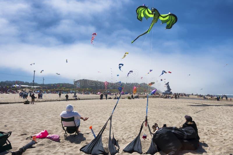 每年风筝飞行节日 免版税库存照片