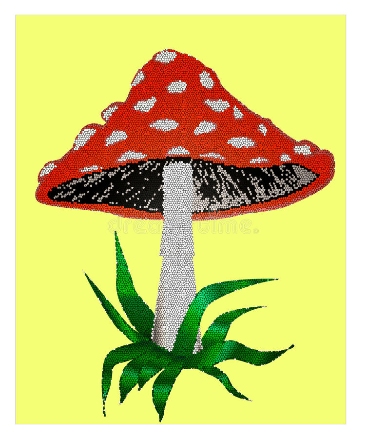 毒伞形毒蕈的蘑菇 免版税图库摄影