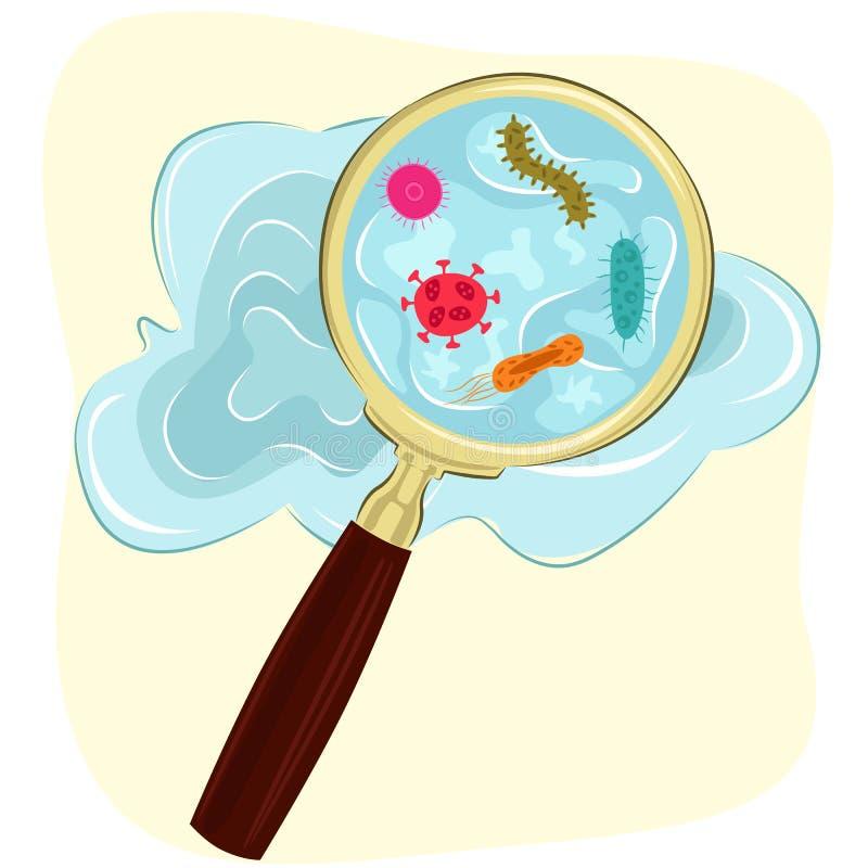 毒菌、细菌和病毒细胞在水中在放大镜下 库存例证