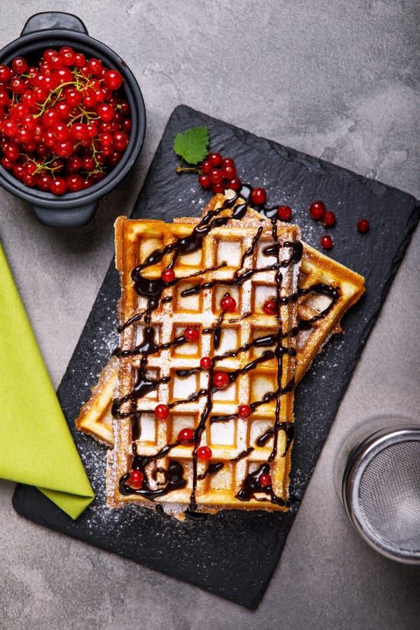 比利时华夫饼干板材用巧克力汁和无核小葡萄干结果实 图库摄影