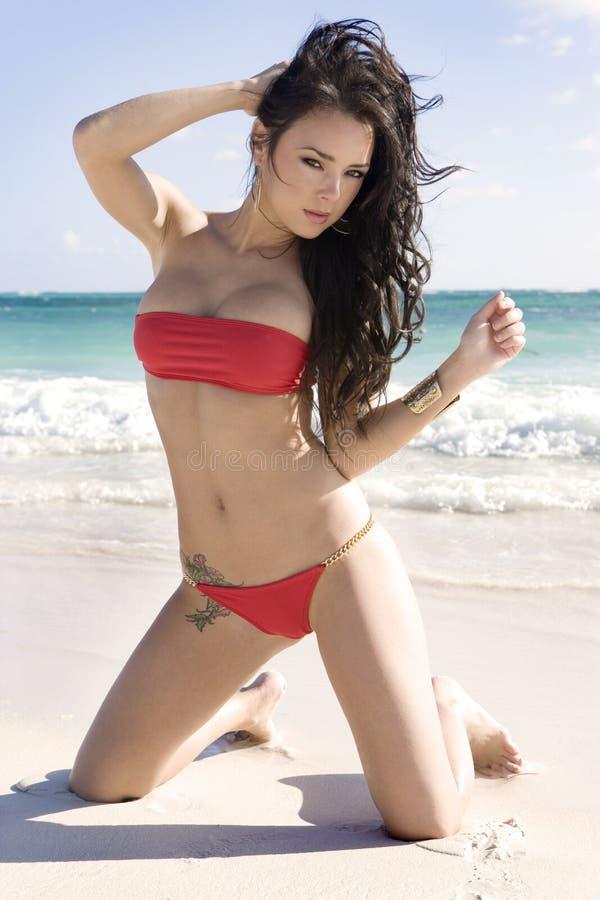 比基尼泳装深色模型红色性感 免版税库存照片