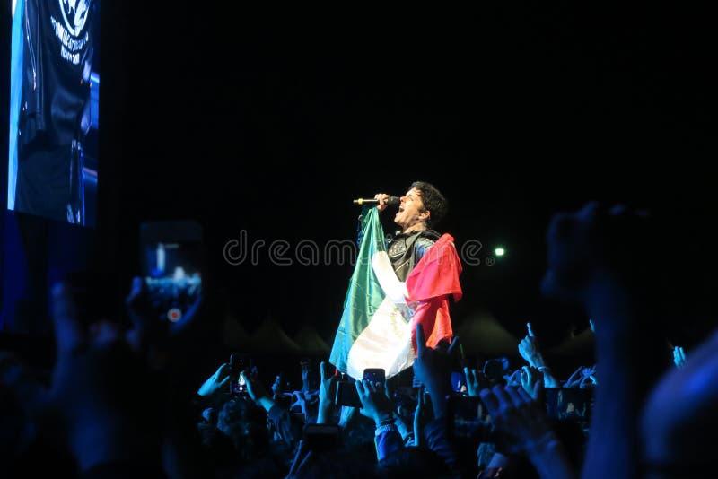 比莉·乔·阿姆斯特朗在绿日协奏曲中与墨西哥国旗挤在一起 图库摄影