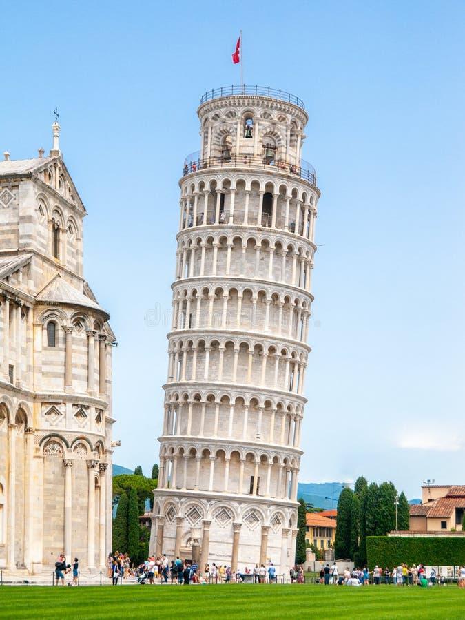 比萨斜塔o大教堂正方形在比萨,托斯卡纳,意大利 免版税图库摄影