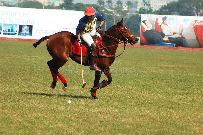比赛印度kolkata马球 免版税图库摄影