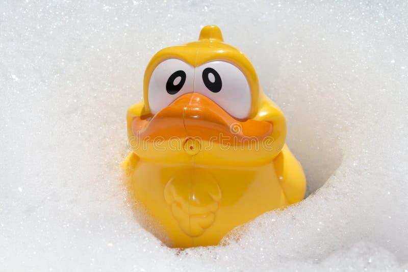 比赛的黄色鸭子在卫生间里 免版税库存图片