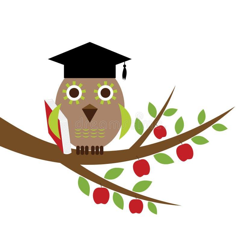 毕业明智帽子的猫头鹰 库存例证