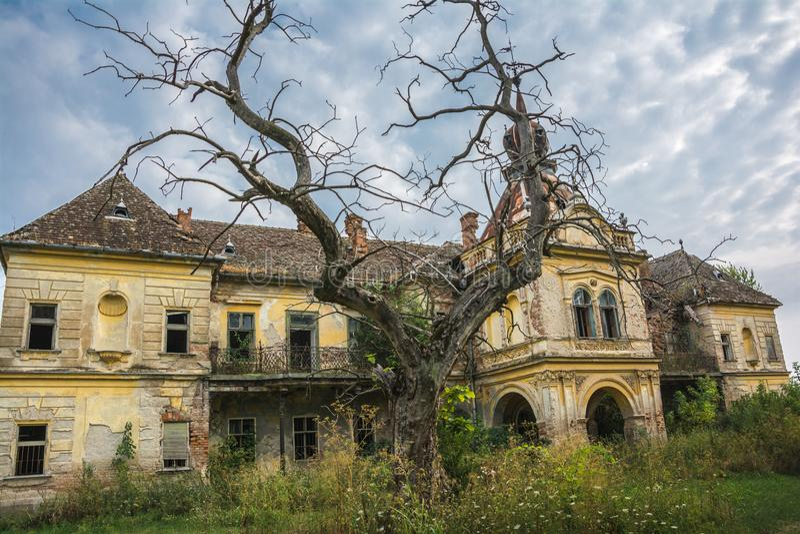 毕森根市城堡老废墟在市的弗尔沙茨附近,塞尔维亚 免版税库存图片