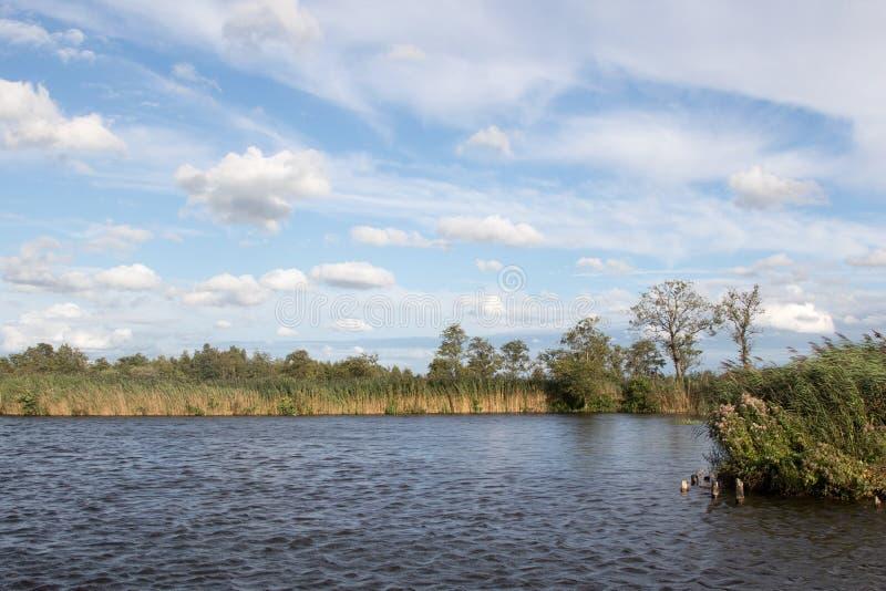 毗邻一个开拓地的湖在荷兰 库存照片