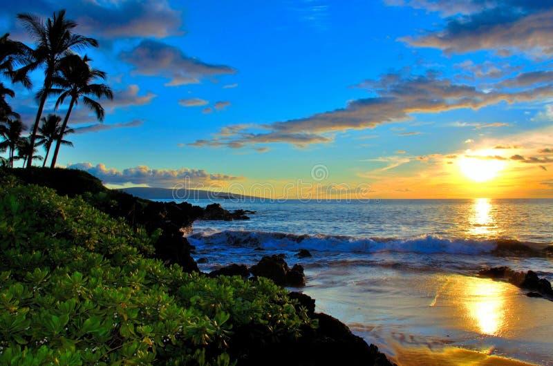 毛伊夏威夷与棕榈树的海滩日落 免版税库存照片